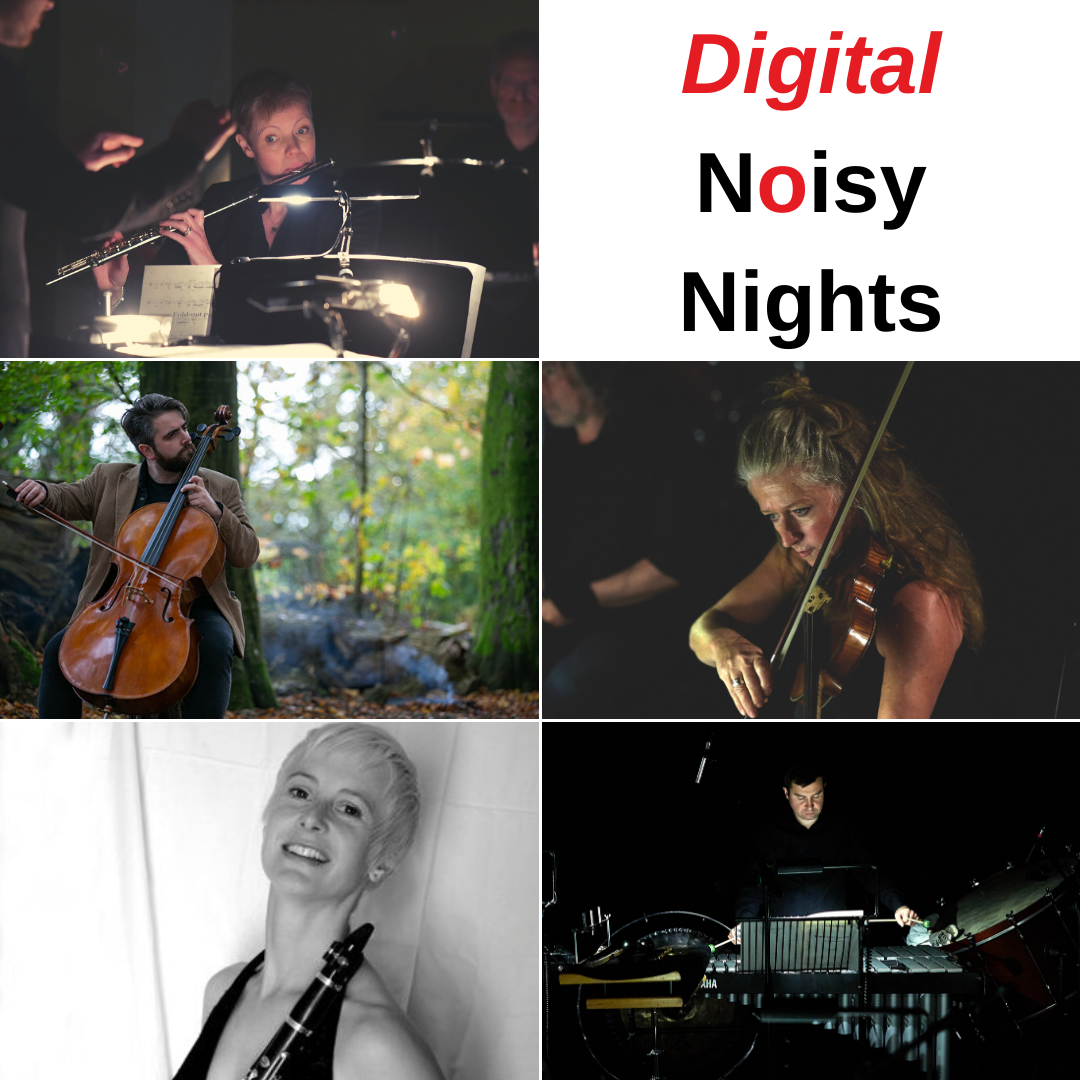 Grid of musicians for Digital Noisy Nights